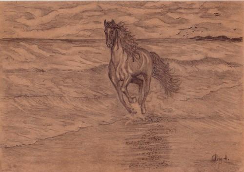 CAL PE PLAJA,desen in creion
