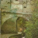 S283 BRASOV Aleea Dupa ziduri CIRCULAT 1989 - Carte Postala Transilvania dupa 1918