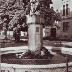 R-5219 Sibiu Fantana arteziana Circulata - Carte Postala Transilvania dupa 1918