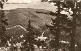 R5314 SINAIA Valea Rea CIRCULAT1961