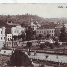 6018 Zalau Piata Libertatii Necirculata - Carte Postala Crisana dupa 1918