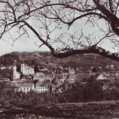 R-6015 Vedere din Zalau Circulata - Carte Postala Crisana dupa 1918