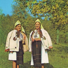 S926 PORT POPULAR Saliste (judetul Sibiu) CIRCULAT - Carte Postala Transilvania dupa 1918
