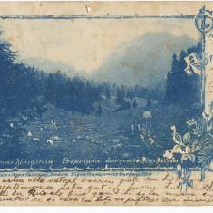 CFL 1901 ROMANIA Ardeal ilustrata litografie Muntii Piatra Craiului jud Brasov