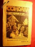 ST.NEGULESCU - COMOARA - cca 1926