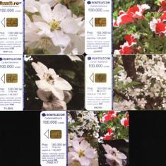 Set de 5 cartele telefonice Romtelecom, Flori