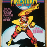 Firestorm . The Nuclear Man #67 - Reviste benzi desenate