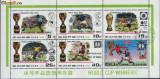 Korea-Fotbal Cupa Mondiala 1978