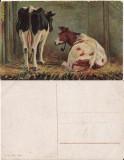 Ilustrata animale 9-vaci-ilustratori