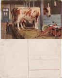Ilustrata animale 12-vaci-ilustratori