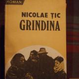 NICOLAE TIC, GRINDINA - Roman