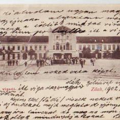 P Zalau Superba clasica circulata 1902 - Carte Postala Crisana dupa 1918