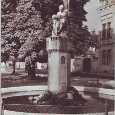 R 5218 Sibiu Fantana arteziana Circulata - Carte Postala Transilvania dupa 1918