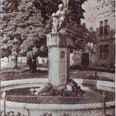 R 5217 Sibiu Fantana arteziana Circulata - Carte Postala Transilvania dupa 1918