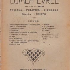 6 reviste LUMEA EVREE (an I, 1919, dir.I.Brucar)