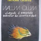 Nicholas Catanoy - Walum olum (1981) - Roman, Anul publicarii: 1991