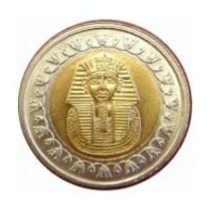 Bnk mnd egipt 1 lira 2008 unc, bimetal