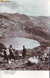 R-8173 MASIVUL RETEZAT-Lacul Zanoaga, NECIRCULAT