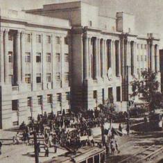 R 7073 TIMISOARA- PREFECTURA CIRCULATA - Carte Postala Banat dupa 1918