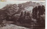 R 7173 MUNTII APUSENI- Valea Ariesului CIRCULATA