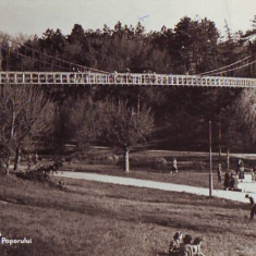 R 7655 CRAIOVA -Parcul poporului CIRCULATA
