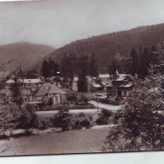 R-7436 BUSTENI, CIRCULAT 1958