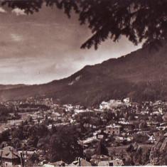 R-7437 BUSTENI, CIRCULAT 1958