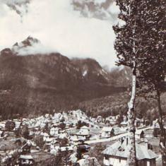 R-7446 BUSTENI, CIRCULAT 1959