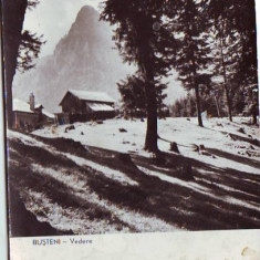 R-7447 BUSTENI, CIRCULAT 1960