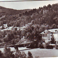 R-7490 CALIMANESTI-Pod peste Olt, CIRCULAT 1962 - Carte Postala Oltenia dupa 1918