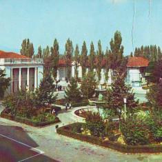 S-3175 BIHOR-Orasul Petru Groza, NECIRCULAT