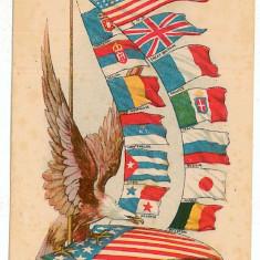 1418 - Romania, TRICOLORUL intre alte steaguri - old postcad - unused