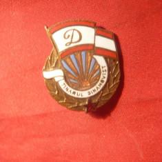 Insigna Fotbal -Tanarul Dinamovist