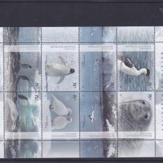 Fauna din Antartica pinguini foci ..Argentina. - Timbre straine, America Centrala si de Sud