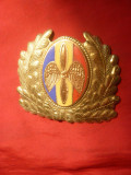 Insigna Sapca-   Aviatie