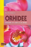 Alfons Burger - Orhidee crescute in casa si in birou