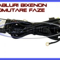 SET CABLURI CABLAJ BIXENON COMUTARE FAZE SCURTA LUNGA - H4 - Kit Xenon BOORIN