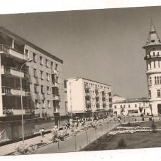Carte postala- BUZAU - Carte Postala Muntenia dupa 1918, Circulata, Fotografie