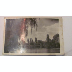 "PVM - Ilustrata Cluj ""Lacul din Parc"", necirculata"