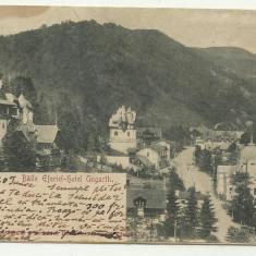 SINAIA : BAILE EFORIEI - HOTEL UNGARTH, U.P.U., circulata 1903, timbru