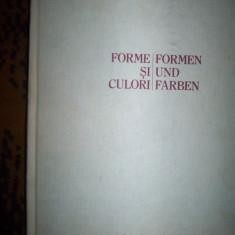 Forme si culori album de arta - Rodica Irimie Fota