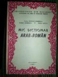 Mic dictionar arab - roman - Maria Dobrisan , Doina Dinca, Nicolae Dobrisan