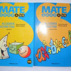 Algebra/geometrie, clasa a VIII-a, partea a I-a+partea a II-a - Manual scolar paralela 45, Clasa 5, Paralela 45