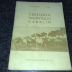 Cresterea tineretului cabalin - S. Romanovschi si I . Comsa -1956