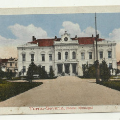 TURNU SEVERIN : PALATUL MUNICIPAL - circulata 1919