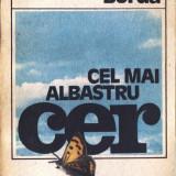 CEL MAI ALBASTRU CER de VALENTIN BORDA - Nuvela