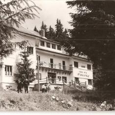 CPI (B880) STINA DE VALE, STANA DE VALE - CABANA TURISTICA, EDITURA MERIDIANE, CPCS, ILUSTRATA CIRCULATA, 1964, STAMPILE, TIMBRU FILATELIC