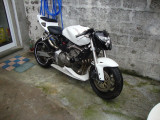 Bug Spoiler Honda Hornet . pinten carena belly pan