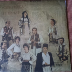 Cate stele s pe banat disc vinyl lp muzica populara banateana, VINIL, electrecord