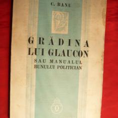 C.Banu - Gradina lui Glaucon sau Manualul bunului politician